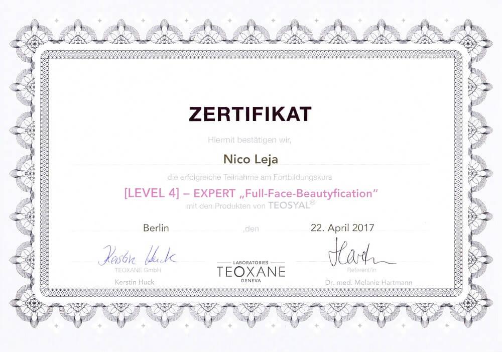 MasterClass Full-Face-Beautyfication Faltenunterspritzung - Expert Level 4 Workshop in Berlin - medical Kurs