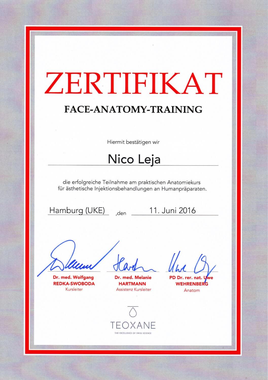 Face Anatomy Training Hamburg - ästhetische Faltenunterspritzung mit Hyaluronsäure Masterclass/Expert - Kurs/Workshop