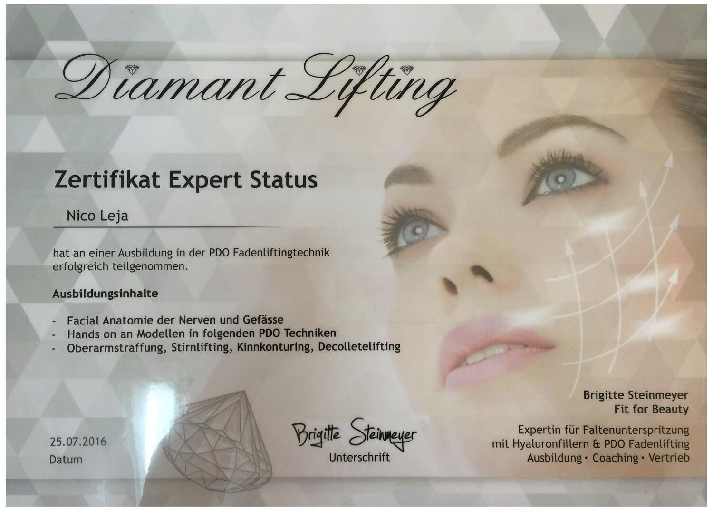 Fadenlifting Masterclass Einzelschulung - Experten Worlshop in Berlin - medical Kurs