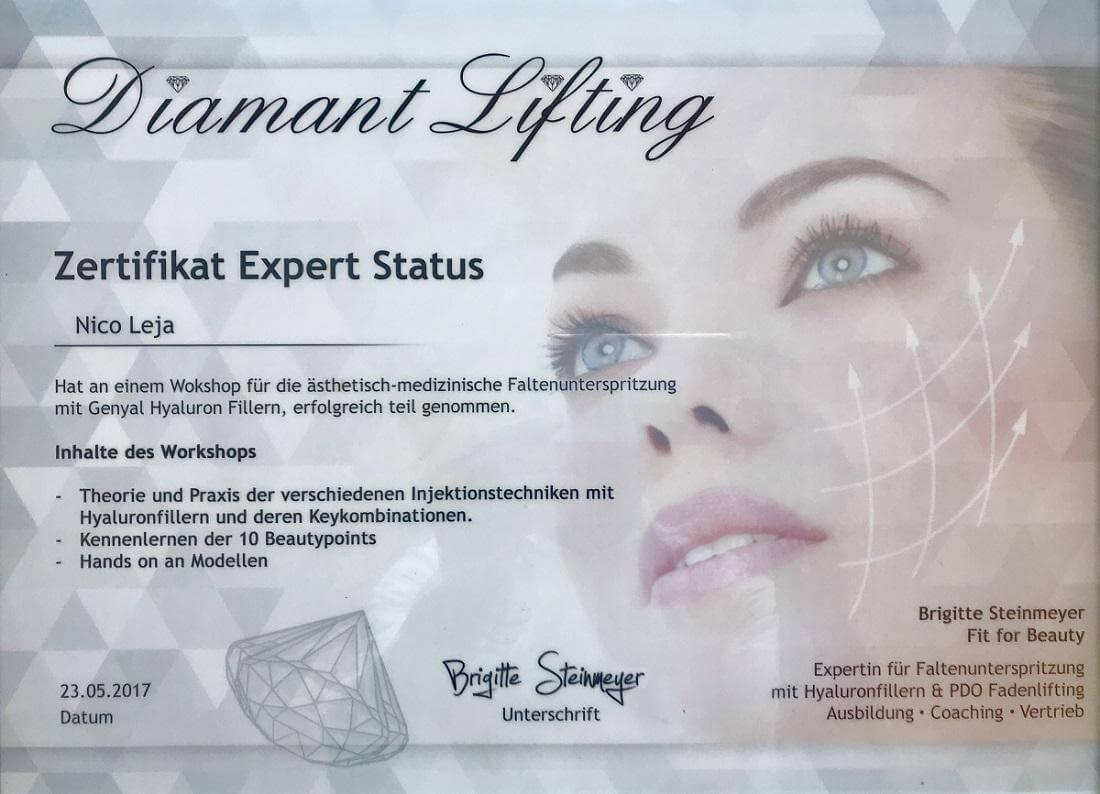 MasterClass Workshop - Faltenunterspritzung, Lippen aufspritzen, Botox & Fadenlifting in Kombination