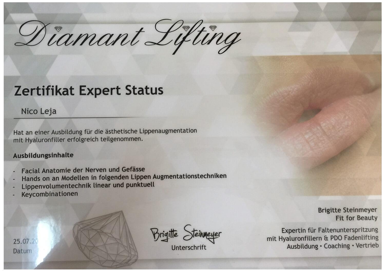 Lippen unterspritzen Masterclass Einzelschulung - Experten Worlshop in Berlin - medical Kurs